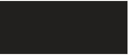 4africa Logo
